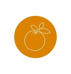 Icon Orange in the Contours vector