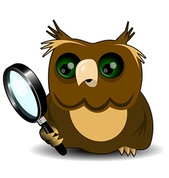 Owl with a magnifying glass vector image vector image