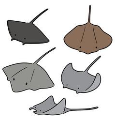 set of ray fish vector image