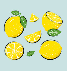 yellow lemon with leaves vector image