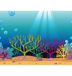 Coral reefs under the ocean vector image vector image