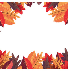 autumn leaves frame decoration white background vector image