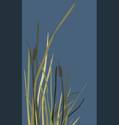 bush swamp reed on a lake vector image