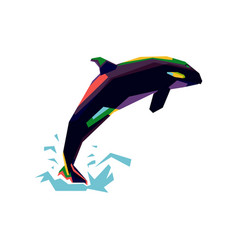 colorful orca vector image