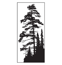 Conifer tree vintage vector