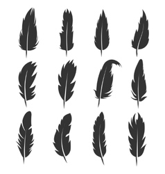 Feather antique pen black icons isolated vector