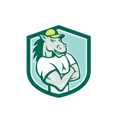 Horse Arms Crossed Shield Cartoon vector