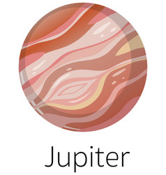 Isolated jupiter on white background vector