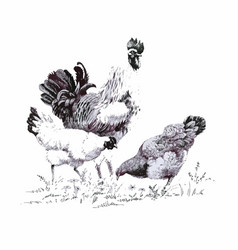 monochrome of rooster and hens vector image