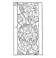 Renaissance ornament vine was used as a design on vector