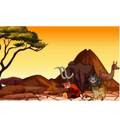 scene with many animals in desert vector image