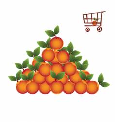 shopping basket with fruit vector image