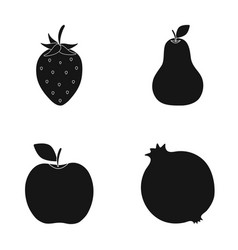 strawberry pear apple pomegranatefruits set vector image