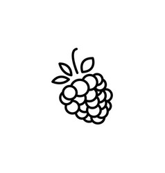 web line icon raspberries black on white vector image