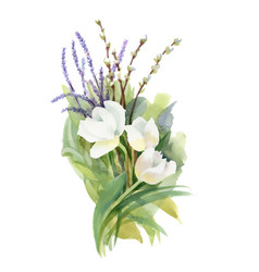 hand drawn bouquet of flowers isolated on white vector image