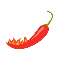 Hot Red Chili Jalapeno Pepper with fire Isolated vector image