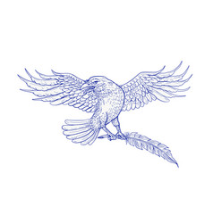 Raven carrying quill drawing vector