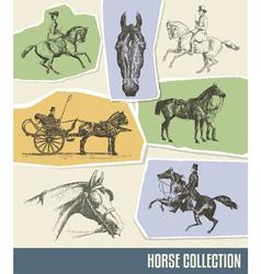 Vintage Horse Set vector image