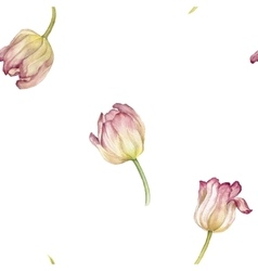 seamless pattern with watercolor pink tulip vector image vector image