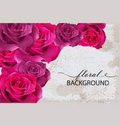 floral background card with fuchsia roses vector image