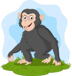 cartoon happy chimpanzee in grass vector image