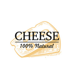 engraving cheese with text on white background vector image