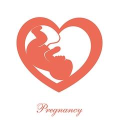 Fetus icon vector