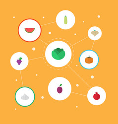 flat icons cauliflower pumpkin garlic and other vector image