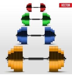 Multicolor classic power dumbbells vector image