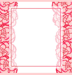 pink begonia flower picotee first love banner vector image