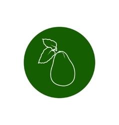 Icon avocado in the contours vector