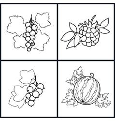 BlackcurrantWatermelonRedcurrantBlackberry vector image