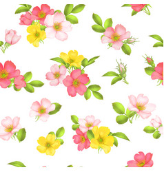 dog-rose blooms wild rose seamless pattern vector image