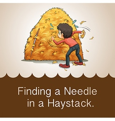 Finding needle in haystack vector