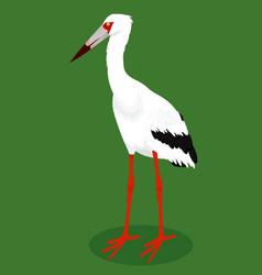 maguari stork cartoon bird vector image