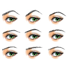 Nine different eyebrows set vector