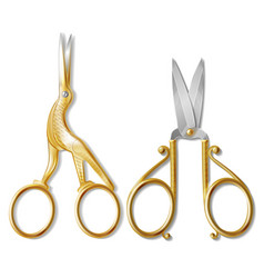 realistic two pairs of nail scissors vector image