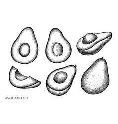 Set hand drawn black and white avocado vector