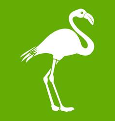 flamingo icon green vector image