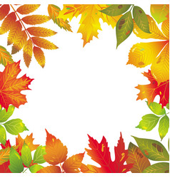 seasonal frame of autumnal leaves vector image vector image