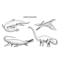 dinosaurs elasmosaurus mosasaurus brontosaurus vector image