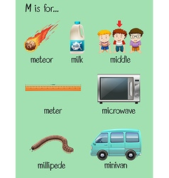 Letter M and many words on poster vector