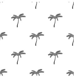 mexican fan palm icon in black style isolated on vector image