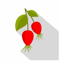 ripe berries of a dogrose icon flat style vector image