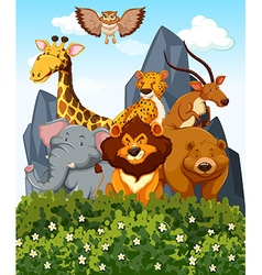 Scene with many wild animals in the park vector