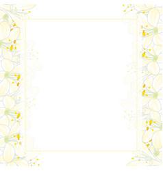 snow white agapanthus banner card border vector image
