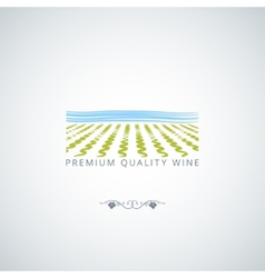 wine field background vector image