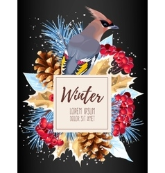 Winter card with rowan vector image