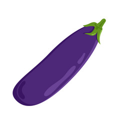 eggplant vegetable food meal vector image