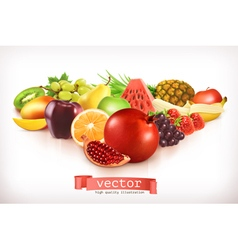 Harvest juicy and ripe fruit isolated on white vector image vector image